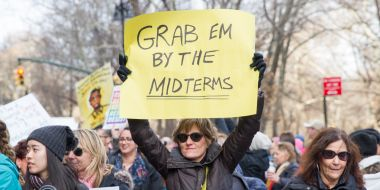 """Grab 'em by the midterms"" protest sign"